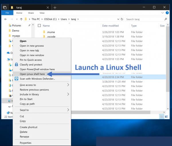 微软发布十月更新1809的第一个付费Linux发行版WLinux