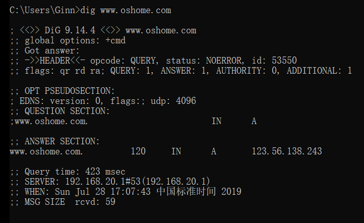 如何在Windows使用dig命令,附使用方法